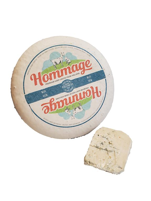 GOAT BLUE HOMMAGE HOLLAND